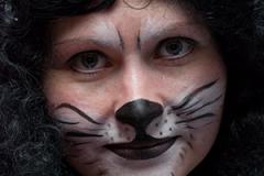 Iriska-Cat1